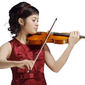 Violino Homenagens